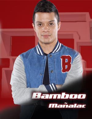 Team-Bamboo